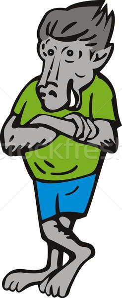 бабуин мужчины Постоянный руки крест иллюстрация Сток-фото © patrimonio