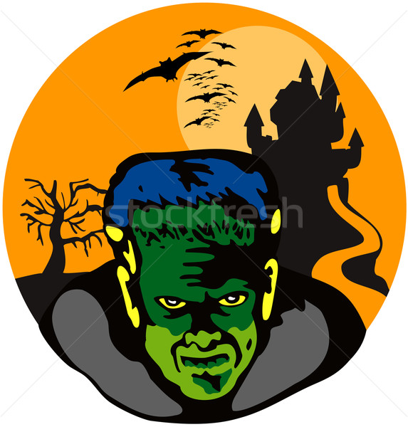 Frankenstein Haunted House Retro Stock photo © patrimonio