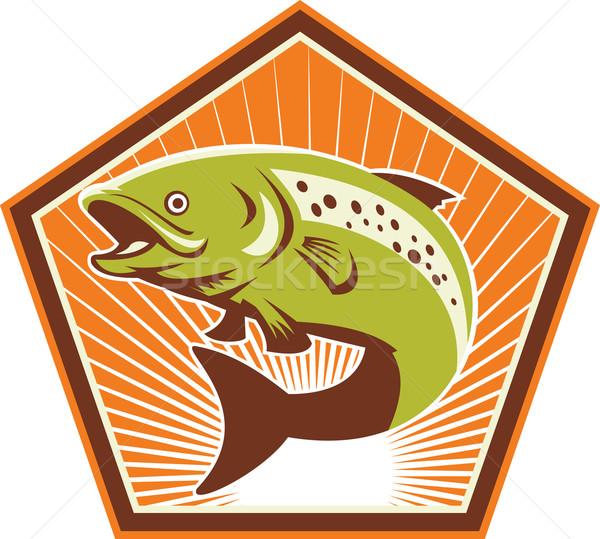 Pisztráng hal ugrik retro illusztráció szett Stock fotó © patrimonio