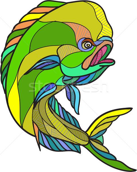 Mahi-Mahi Dorado Dolphin Fish Drawing Stock photo © patrimonio