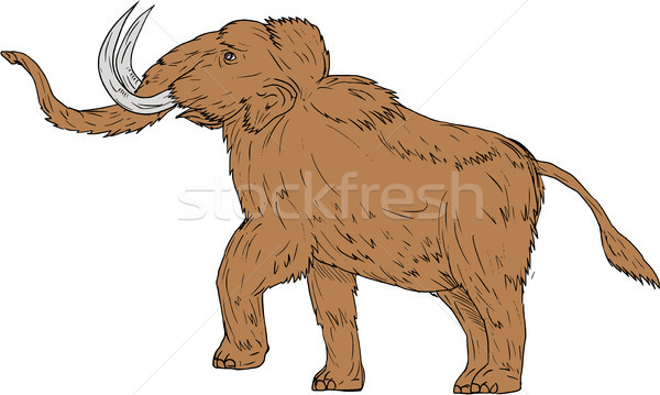 Woolly Mammoth Prancing Drawing Stock photo © patrimonio