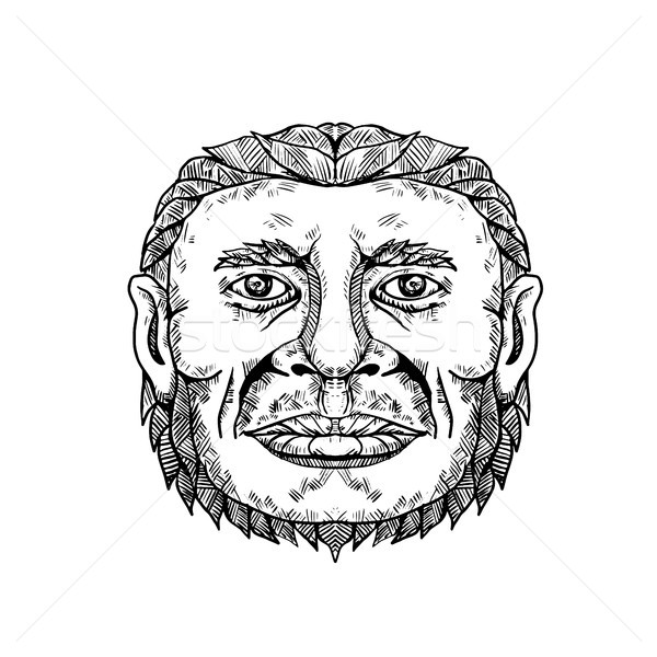 Neanderthal Male Head Doodle Art Stock photo © patrimonio