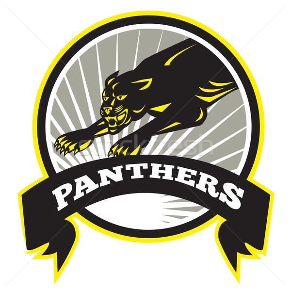 Panther Big Cat Growling Stock photo © patrimonio