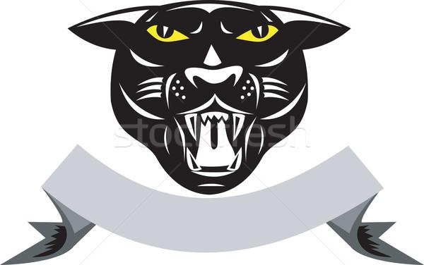 черный Panther большие кошки расти голову изолированный Сток-фото © patrimonio