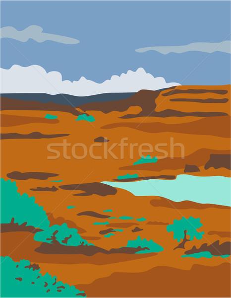 Sivatag jelenet stílus illusztráció víz tó Stock fotó © patrimonio