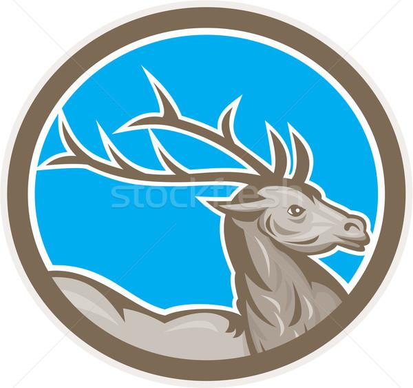 Herten reebok hoofd cirkel retro illustratie Stockfoto © patrimonio