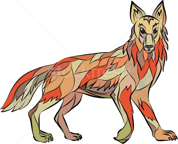 Coyote Side Isolated Drawing Stock photo © patrimonio