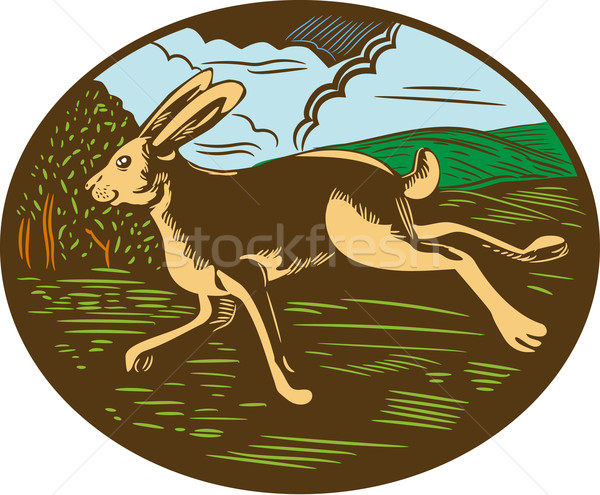 Wild Hare Rabbit Running Oval Woodcut Stock photo © patrimonio