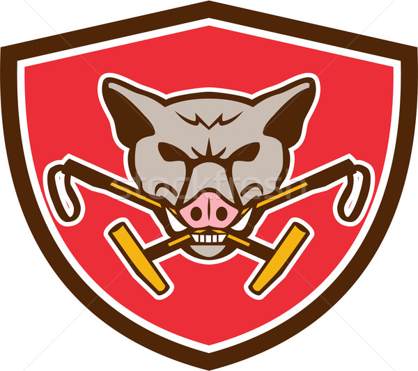 Wild Hog Head Crossed Polo Mallet Crest Retro Stock photo © patrimonio