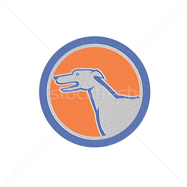 Metallic Greyhound Dog Head Side Retro Circle Stock photo © patrimonio