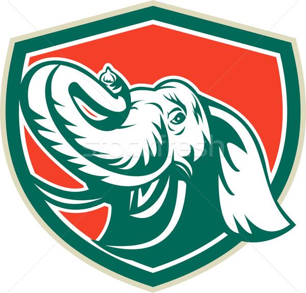Elefante cabeça presa escudo retro ilustração Foto stock © patrimonio