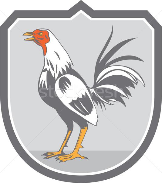 Cockerel Rooster Standing Shield Retro Stock photo © patrimonio