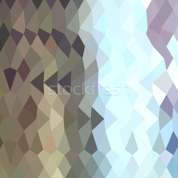 Abstract laag veelhoek stijl illustratie Stockfoto © patrimonio