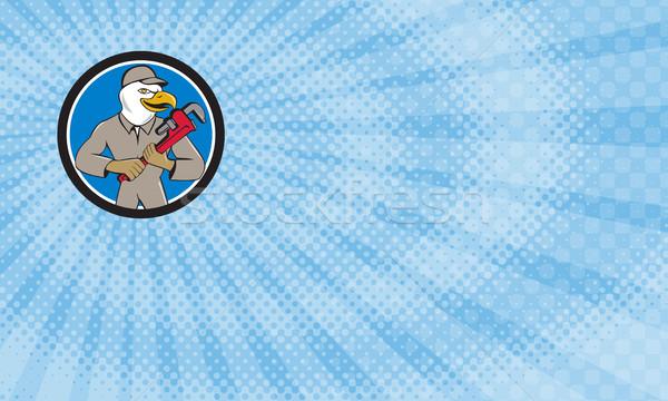 Bald Eagle Plumber  Stock photo © patrimonio