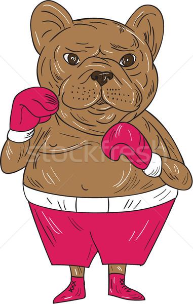 Frans bulldog bokser boksen houding cartoon Stockfoto © patrimonio