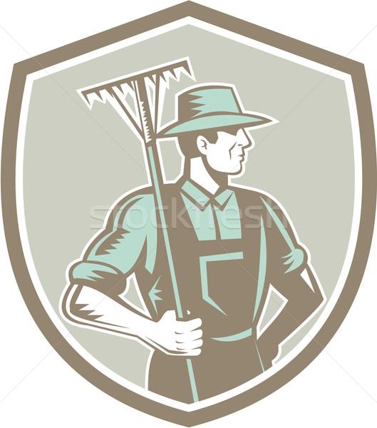 органический фермер грабли щит ретро иллюстрация Сток-фото © patrimonio