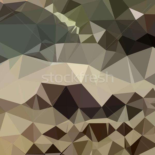 Brun bleu résumé faible polygone style Photo stock © patrimonio
