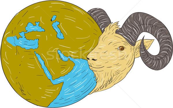 Kos fej Közel-Kelet földgömb rajz rajz Stock fotó © patrimonio