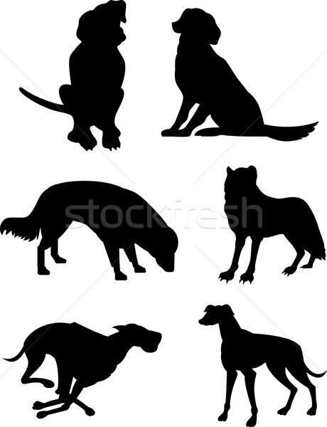 Canine Silhouettes Stock photo © patrimonio