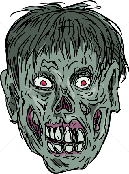 Zumbi crânio cabeça desenho esboço estilo Foto stock © patrimonio