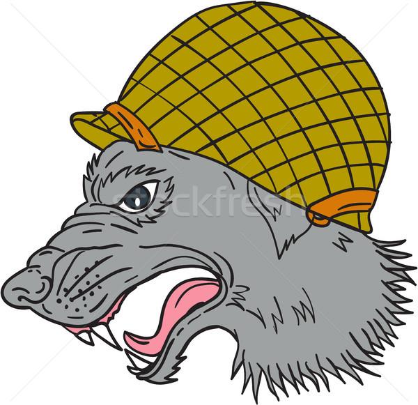 Grey Wolf Head Growling WW2 Helmet Drawing Stock photo © patrimonio