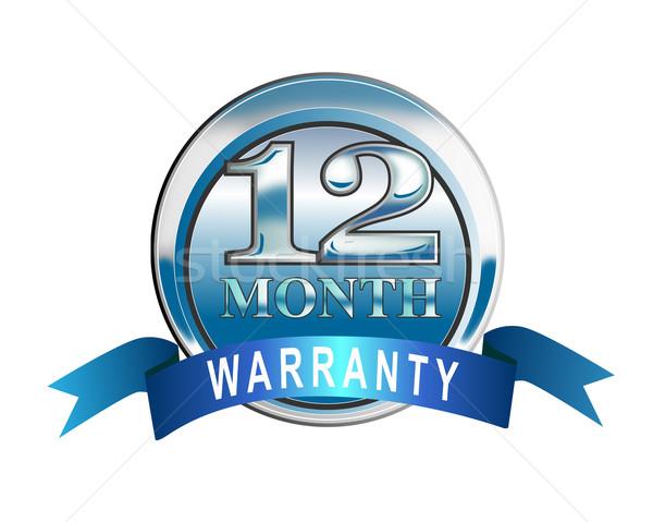 Ikona 12 miesiąc gwarancja niebieski ilustrowany Zdjęcia stock © patrimonio