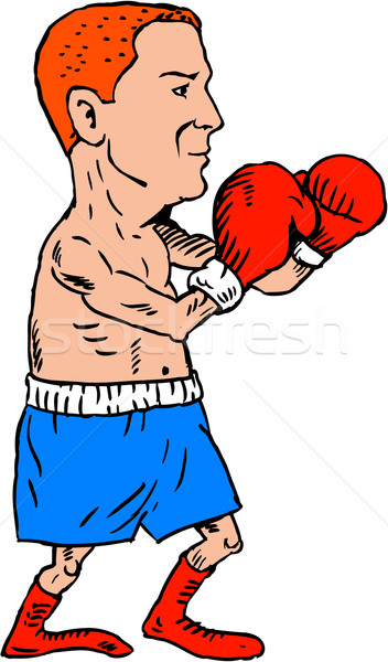 Boxer Fighting Stance Cartoon Stock photo © patrimonio