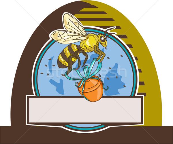 Bee honing pot cirkel tekening Stockfoto © patrimonio