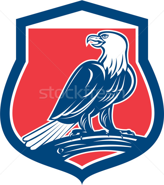 Bald Eagle Perching Shield Retro Stock photo © patrimonio