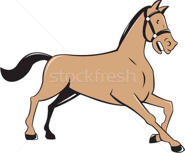 Ló térdel lefelé rajz illusztráció oldal Stock fotó © patrimonio
