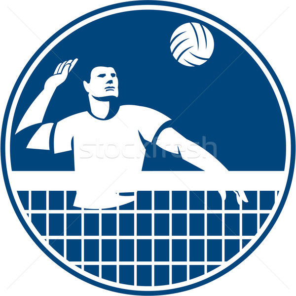 Volleyball Player Spiking Ball Circle Icon Stock photo © patrimonio