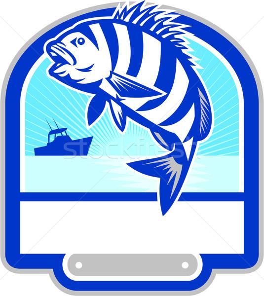 Vis springen vissersboot kuif retro illustratie Stockfoto © patrimonio