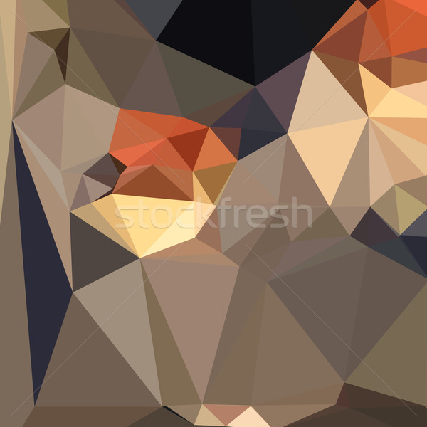 Cool Black Blue Brown Abstract Low Polygon Background Stock photo © patrimonio