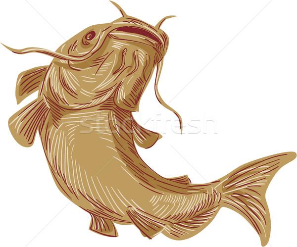 Boue chat up dessin croquis poissons Photo stock © patrimonio