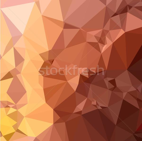 Brun résumé faible polygone style illustration Photo stock © patrimonio