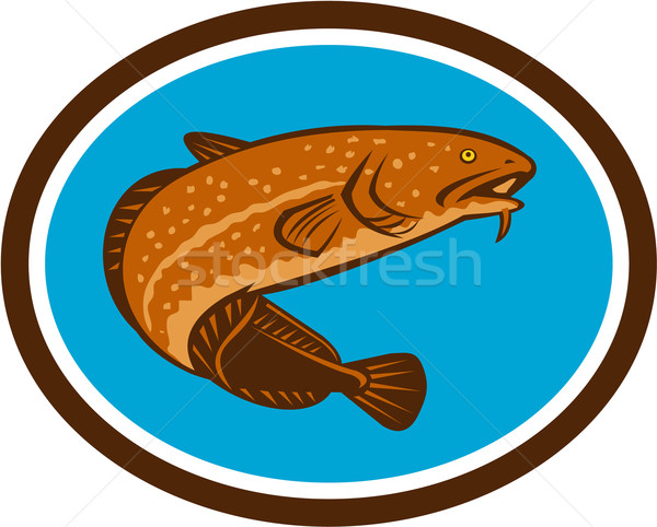 Burbot Fish Oval Retro Stock photo © patrimonio