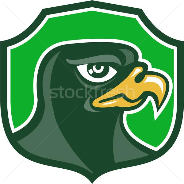 Halcón cabeza lado escudo retro ilustración Foto stock © patrimonio