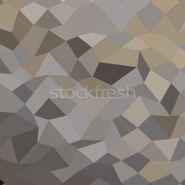 グレー 抽象的な 低い ポリゴン スタイル 実例 ストックフォト © patrimonio