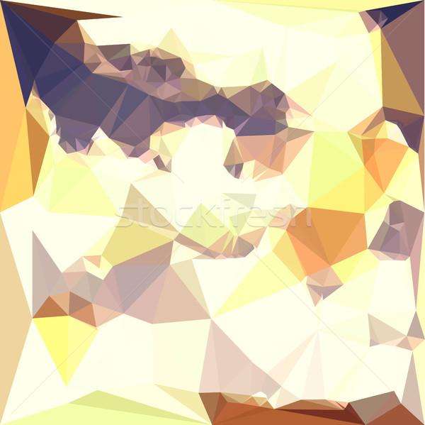 Golden Wheat Abstract Low Polygon Background Stock photo © patrimonio