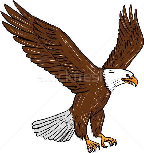 Chauve aigle battant dessin croquis style Photo stock © patrimonio