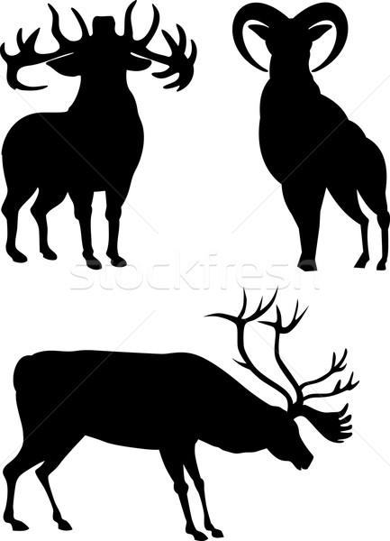 Elk Silhouettes Stock photo © patrimonio