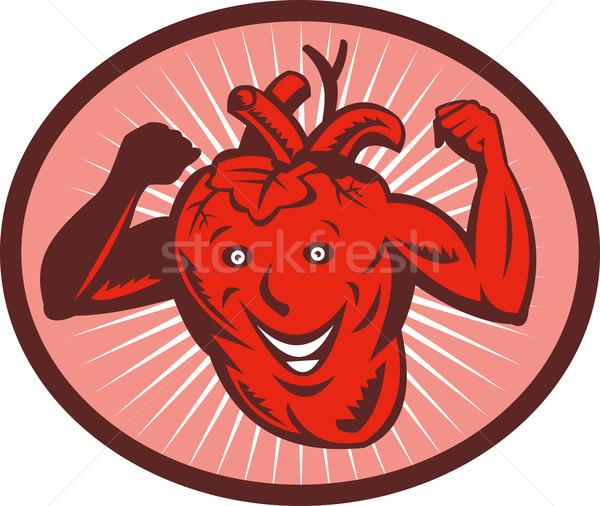 Szczęśliwy zdrowe serce ilustracja serca krwi mięśni Zdjęcia stock © patrimonio