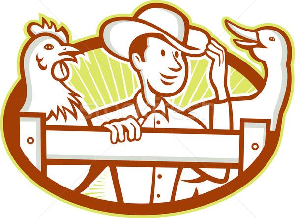 Gazda tyúk liba rajz illusztráció kerítés Stock fotó © patrimonio
