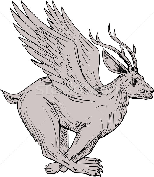 Wolpertinger Running Side Drawing Stock photo © patrimonio