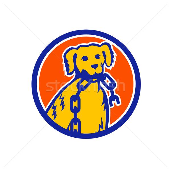 Retriever Dog Biting Broken Chain Mascot Stock photo © patrimonio