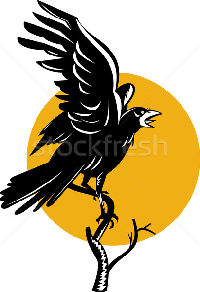 Raven Perching on Branch Retro Stock photo © patrimonio