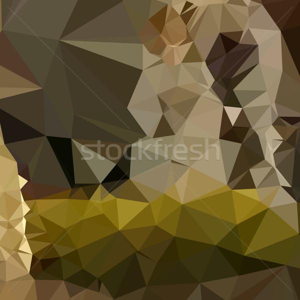Dzsungel zöld absztrakt alacsony poligon stílus Stock fotó © patrimonio