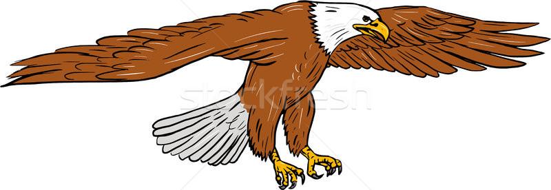 Bald Eagle Swooping Drawing Stock photo © patrimonio
