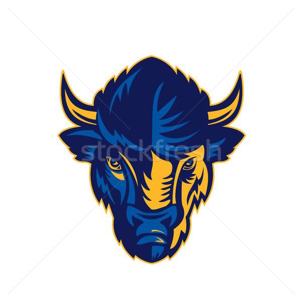 American Bison Head Retro Stock photo © patrimonio