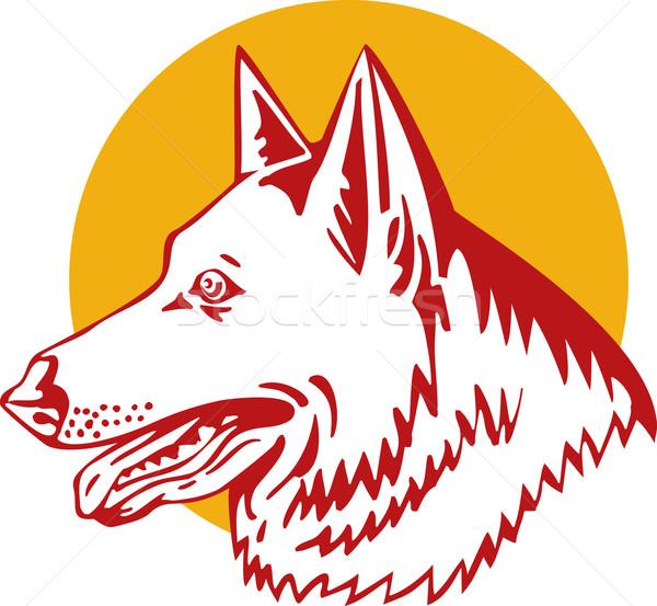 Pastore cane illustrazione vista laterale stile retrò Foto d'archivio © patrimonio